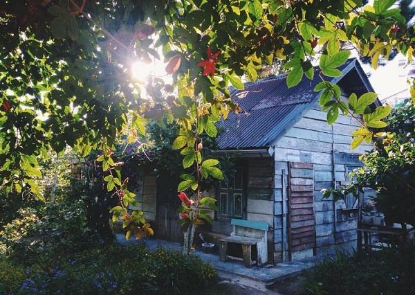 Mẫu nhà gỗ đà lạt